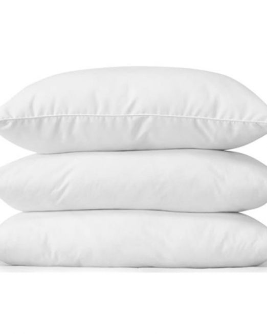 lifson-hungarian-goose-down-pillows White bg