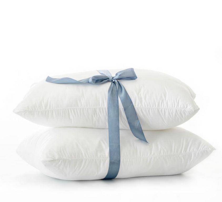 Lifson Micro Memory Pillows